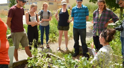 A group of workshop participants standing around agronomist Kiara Jack, who is explaining about garden pests in the Fresh Roots schoolyard farm.